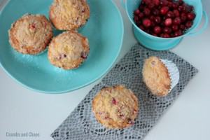 Eggnog Cranberry Muffins | Crumbs and Chaos #muffins #breakfast #holiday www.crumbsandchaos.net