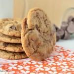 chewy pumpkin cookies 1