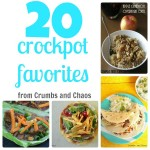 20 Crock Pot Favorites