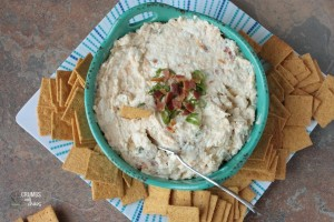 Apricot Gorgonzola Cheese Spread | Crumbs and Chaos #easyappetizer #bluecheese #dip www.crumbsandchaos.net