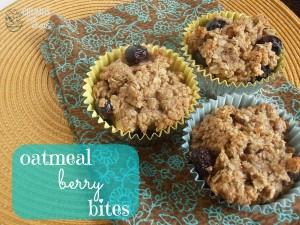 Oatmeal Berry Bites   crumbsandchaos.net   #oatmeal #berries #snack #kidfriendly