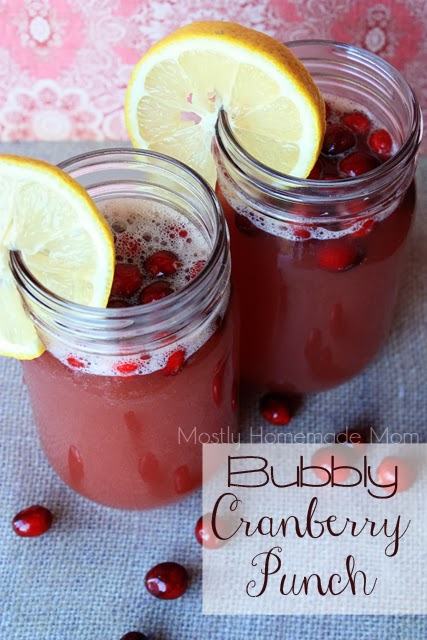 Bubbly Cranberry Punch 1