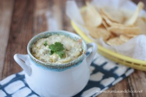 Mexican Artichoke Dip | Crumbs and Chaos