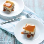 Caramel Overload Cheesecake Bars - recipe on www.crumbsandchaos.net