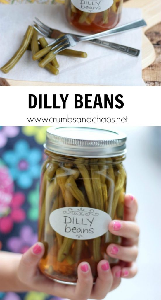 Pickled and zesty, Dilly Beans are an easy way to preserve fresh green beans and enjoy them all year long!