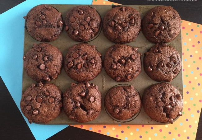Double Chocolate Banana Muffins | crumbsandchaos.net | #chocolate #banana #muffins #4ingredient