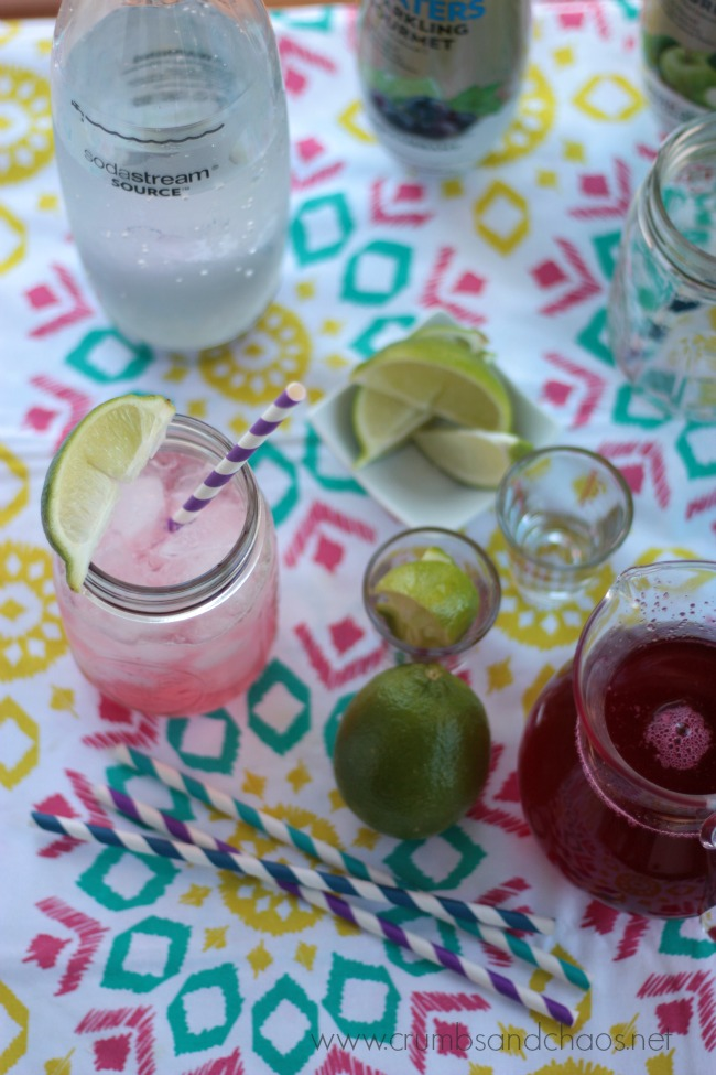 Cranberry Lime Spritzer | Crumbs and Chaos