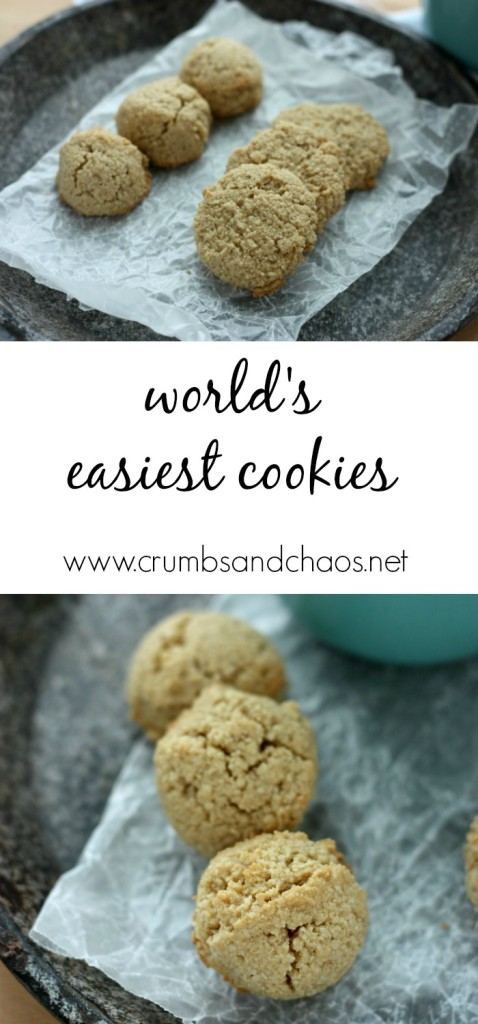 World's Easiest Cookies | Crumbs and Chaos