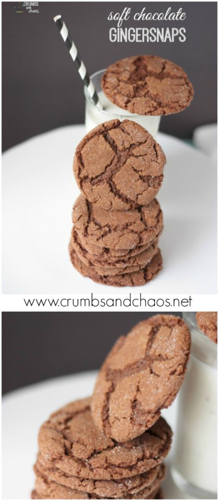 You'll love these Soft Chocolate Gingersnaps!  Make them now and throw them in the freezer for whenever you need them!